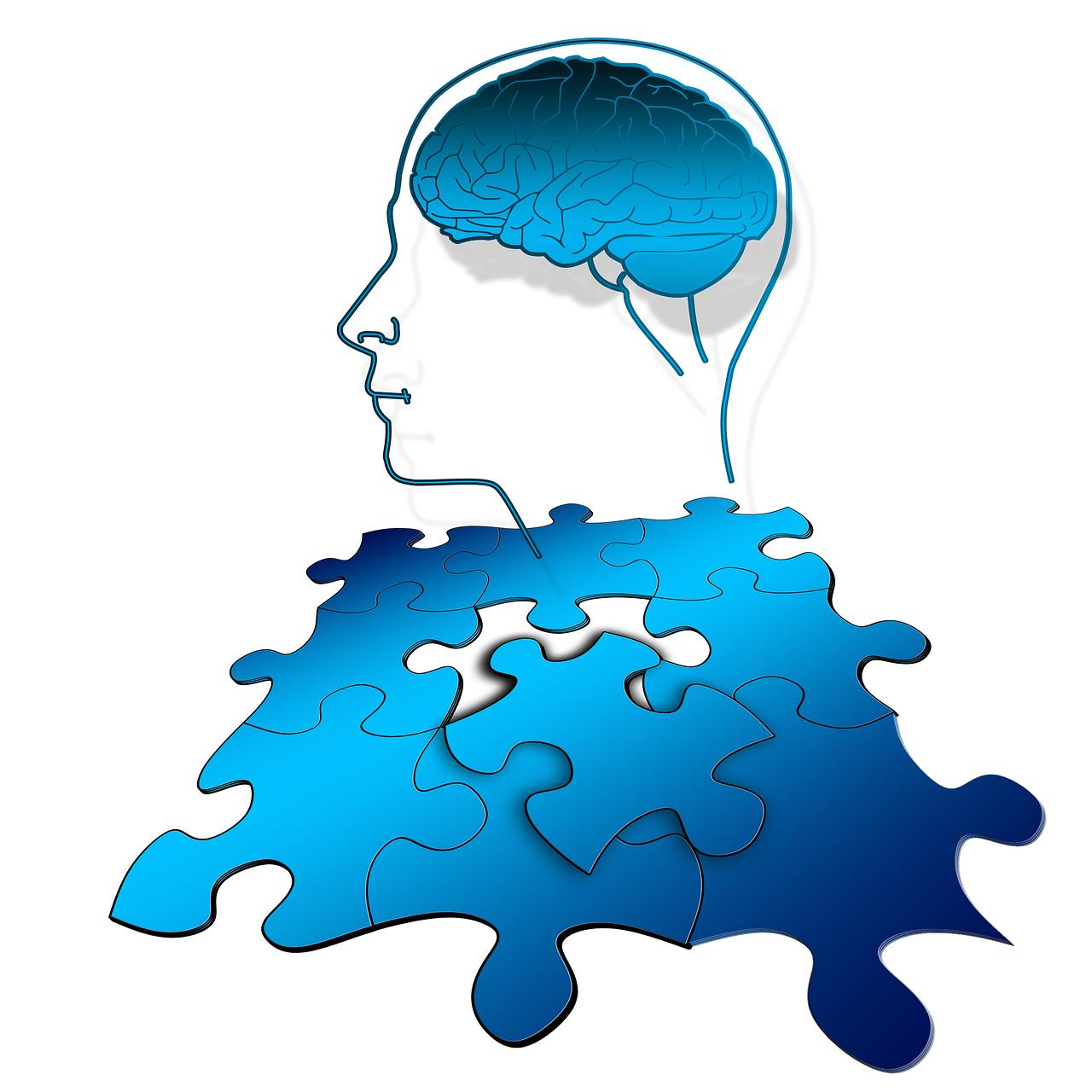 brain puzzle-1746552_1280