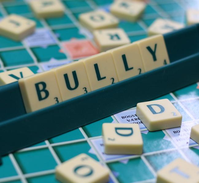 bully 580